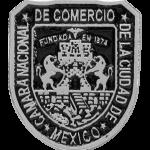 Pin Camara Nacional de Comercio de la Ciudad de México